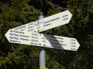 Wandern und in herrlicher Schwarzwaldlandschaft